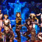 cats_o_musical_da_broadway