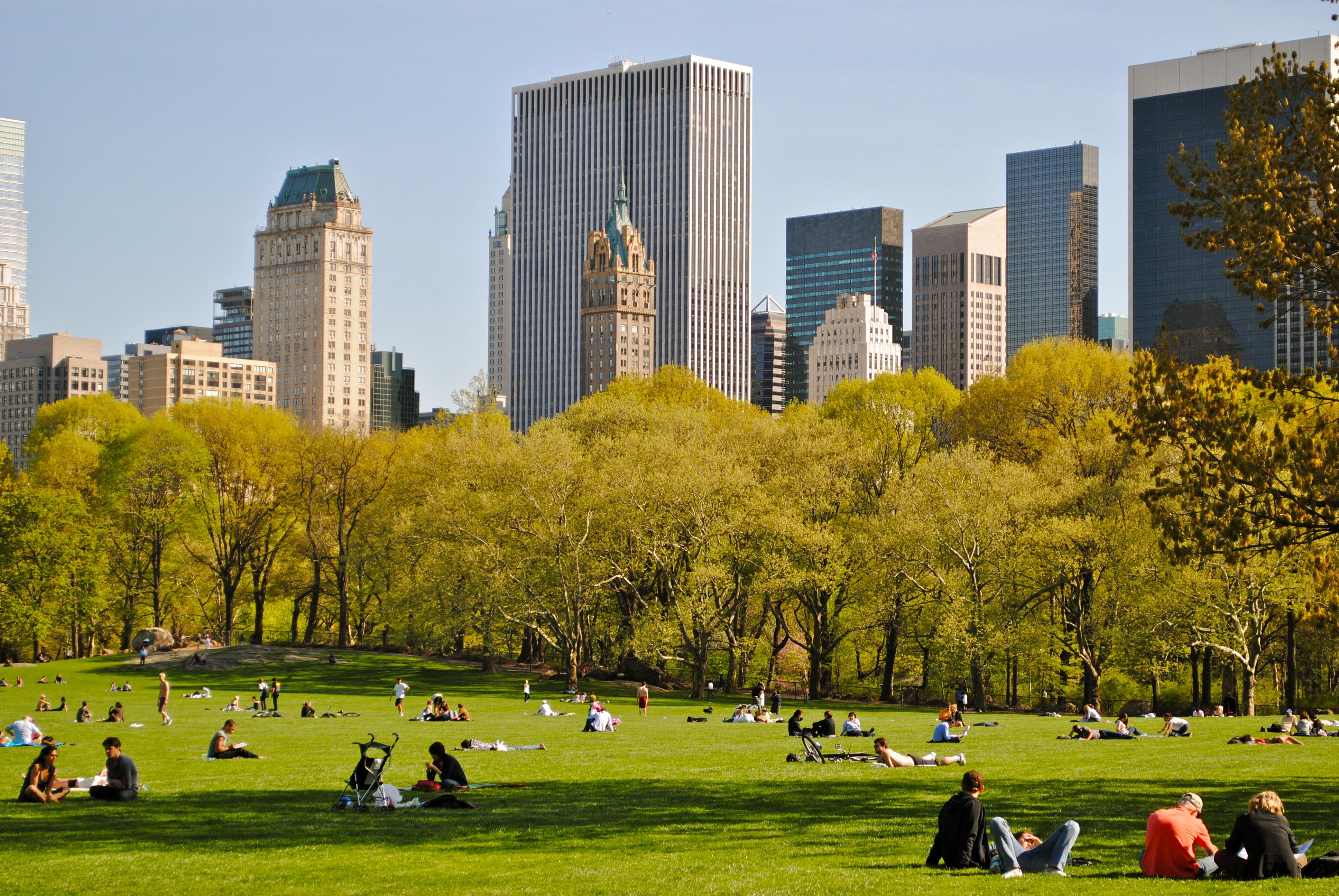 central-park-nova-york-sheep-meadow